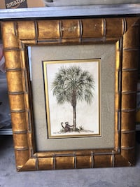 PALM TREE & MONKEY Washington, 20009