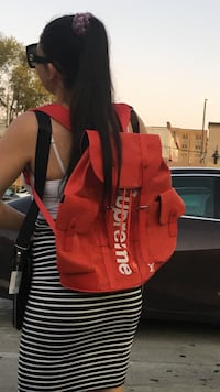Fashion backpack Lakewood Township, 08701