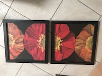 two red and black flower paintings Riverview, 33569