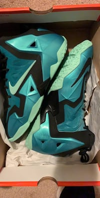 Youth 6.5/women's 8.5 Lebron XI Shoes. Never worn in brand new condition Buffalo, 14228