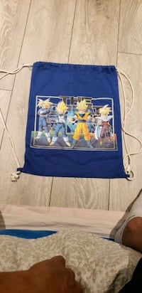 dragonball z backpack Kitchener, N2E 2W3