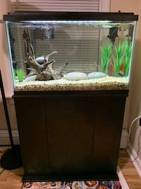 29 gallon fish tank, stand, Cover, Heater Everything only 9 months old