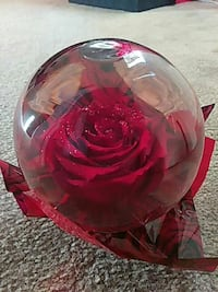 Used Red And Clear Rose Water Globe For Sale In Whittier