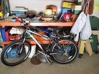 Specialized mountain bike Ceres, 95307