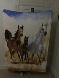 three horse printed towel Renfrew, K7V
