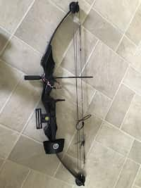 Used Compound Bow for sale in Wrentham - letgo