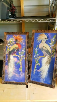 FEATHER BIRD PICTURES $20 AS IS  Shreveport, 71104