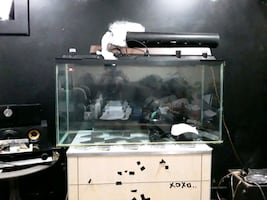 Big fish or lizard tank no leaks or cracks. Comes with accesories