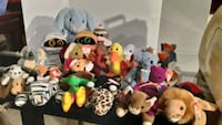 Beanie Baby Collection University Place, 98466
