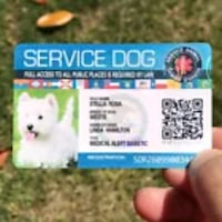 Official service dog ear