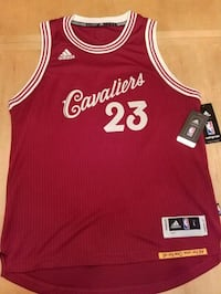 New Authentic LeBron James NBA jersey Toronto, M3H