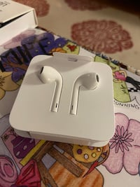Earpods with Lightning Connector Toronto, M4X 1P1