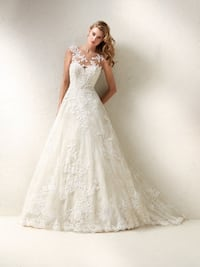 Pronovias Dracme Wedding Gown Mountain View
