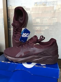 Asics Gel Kayano Trainer Evo