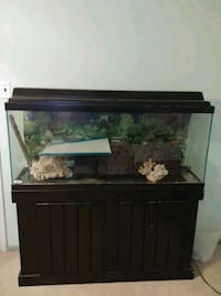 black framed clear glass fish tank Woodbridge, 22193