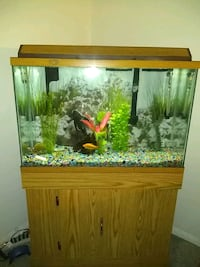 45 gal tank w/ stand excellent condition