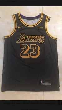 Lebron James Jerseys Los Angeles
