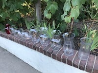 Free Collection of vases (9 units)