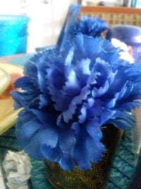 blue and white flower decor Washington, 20032