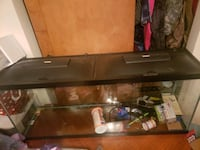 55 gallon fish tank with items inside