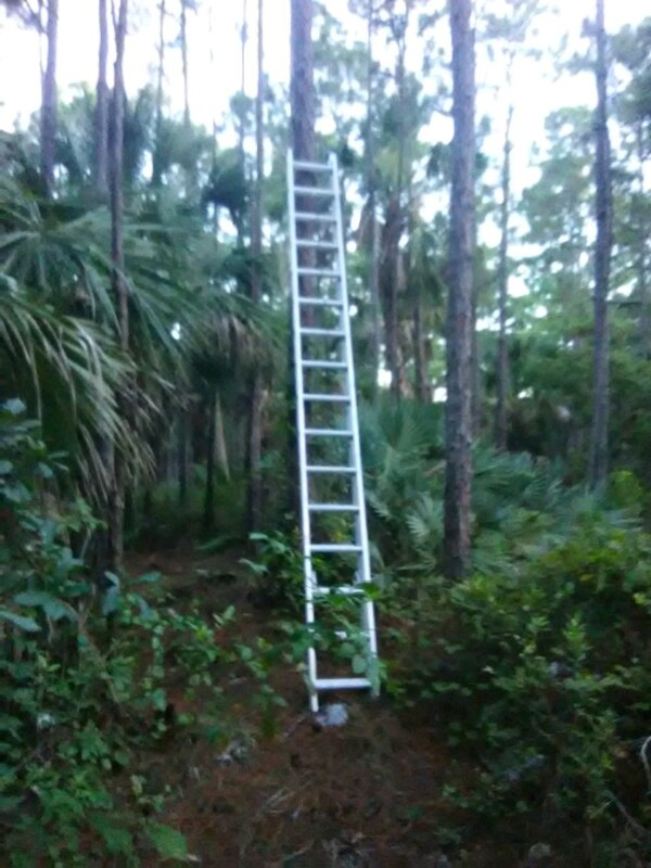Werner Extension Ladder 32 Ft