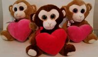 Personalized Valentine's Day Stuffies Brampton, L6T 2M2
