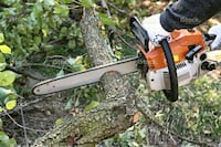 Tree cutting and removing service. Trash removal St. Louis, 63128