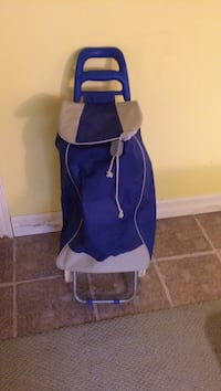 Gray and blue trolley bag