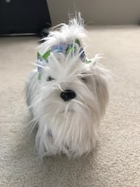 Pucci Pups Toy Dog (w/ carrier bag + accessories!) Coquitlam, V3C 5K1