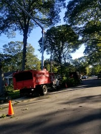 Tree Services Long Island  Brentwood
