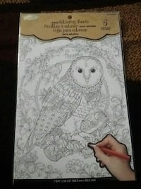 Owl theme colouring Oshawa, L1G 4X1