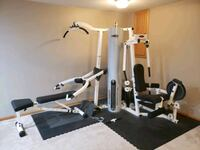 Schwinn Home Gym  Plainfield, 60586