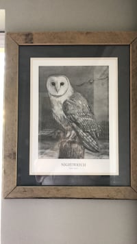 Framed barn wood Owl # West Warwick, 02893