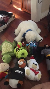 Stuffed Animals/Plushies Virginia Beach, 23456