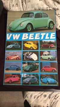 VW beetle picture 3141 km
