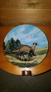 """""""The Black Footed Ferret"""" Decorative Plate  Whitby, L1N 6W5"""