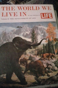 The World We Live In magazine