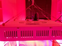 1000 watt grow light TORONTO