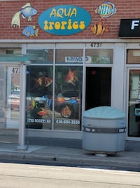 Aqua Tropics Pet Shop (NEW LOCATION)