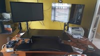 "Dual Monitors ( 27"" ea) with Mounts CARY"