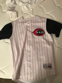 white-and-red pinstripes Majestic Cincinnati Reds baseball jersey Norfolk, 23513