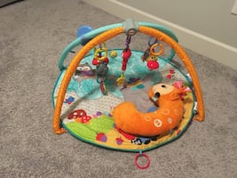 Deluxe Play Gym