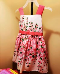 Baby girls 3t pink floral dress Huntley, 60142