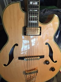 Ibanez PM100 Guitar Catonsville, 21228