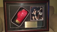 George Chuvalo Shadow Box