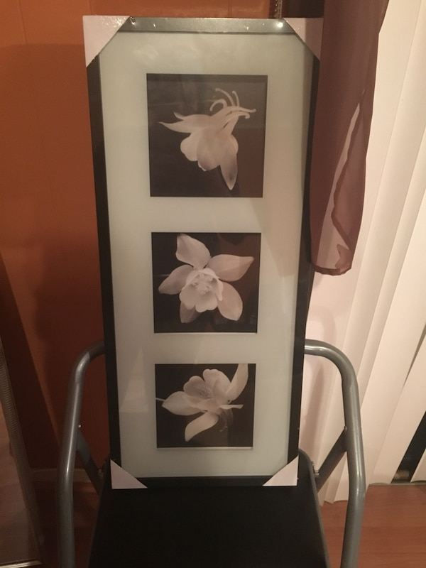 rectangular black wooden white petaled flowers painting