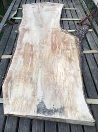 Huge Live Edge Silver Maple Frederick
