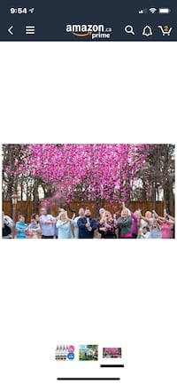 Pink confetti cannons for girl gender reveal party (two cannons)  Calgary, T3R 1R1