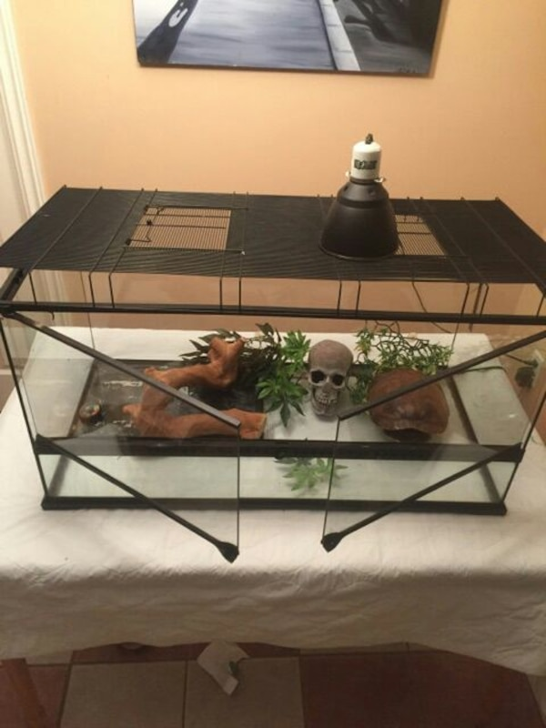 Used 175 Obo Exo Terra Terrarium Large Wide 36x18x18 For Sale In