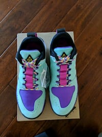 Nike ACG Dog Mountain Men size 9 new